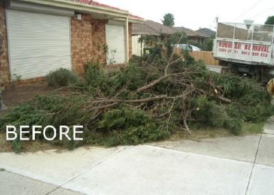 rubbish-removal-before-2