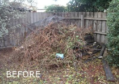 rubbish-removal-before-3